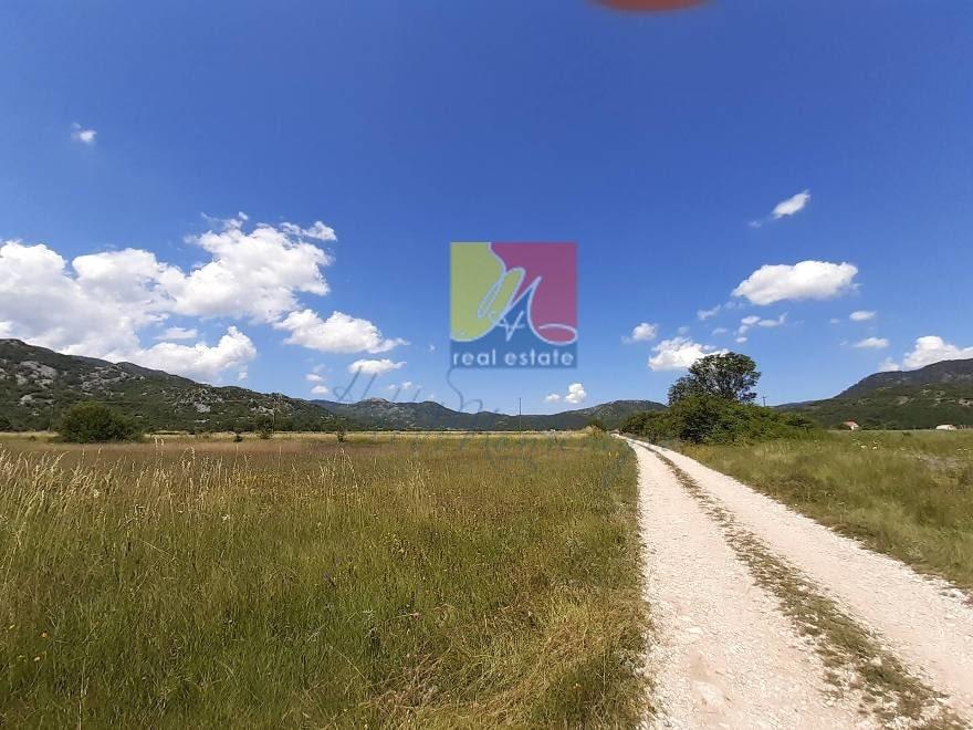 Земля 12 000 м2 с домом в самом экологичном районе Черногории