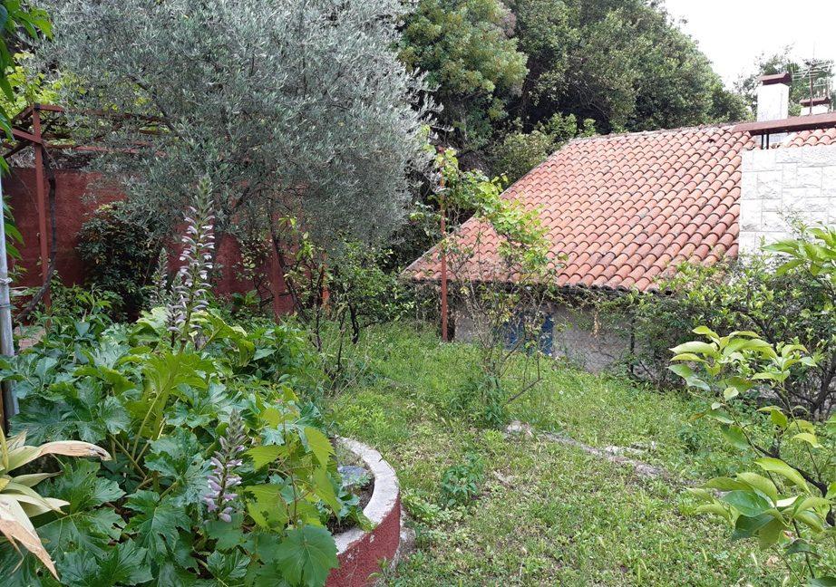 dom-v-chernogorii-savina-happymontenegro-real-estate-agency3